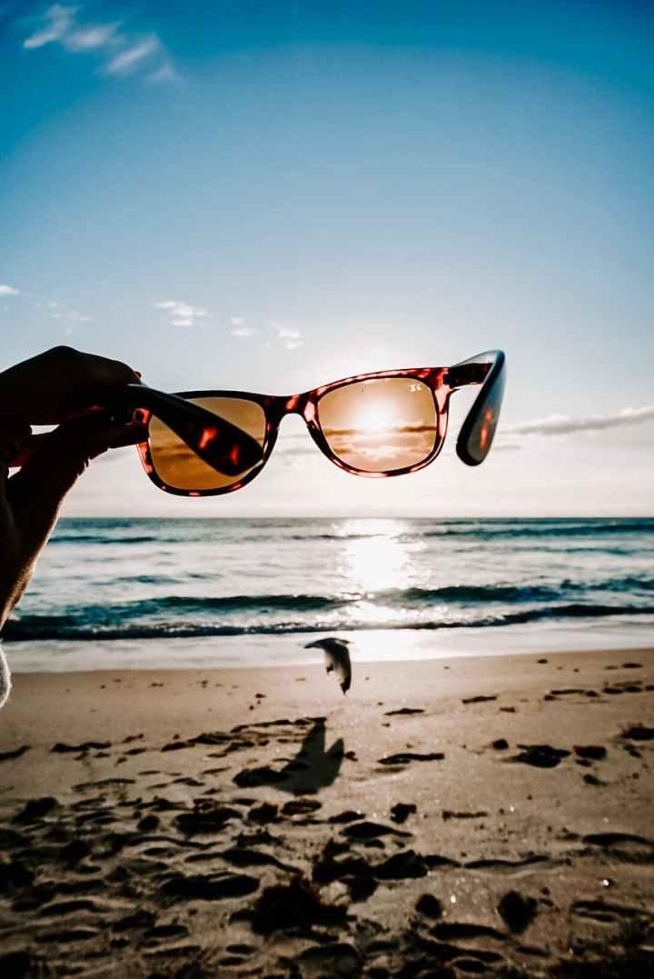 tortoiseshell framed sunglasses